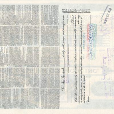 Chas. Pfizer and Co.,Inc. <100 acciones FIRMA MERRILL LYNCH tipo COMUN de 1958